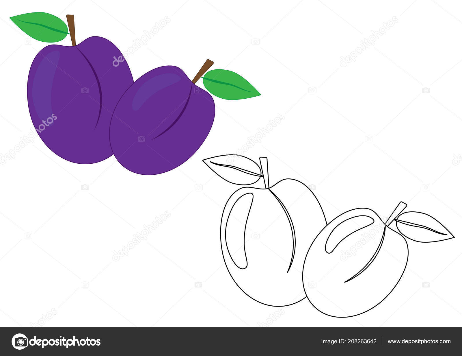 Plums Fruit Coloring Page Vector Illustration Stock Vector