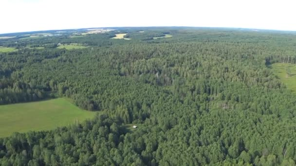 Flying on powered parachute over the forest and field in Belarus. The view from high. Point of view, hand held
