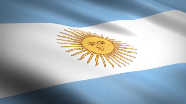 Flag of Argentina. Waving flag with highly detailed fabric texture seamless loopable video. Seamless loop with highly detailed fabric texture. Loop ready in HD resolution