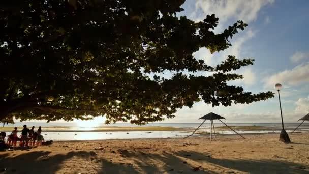 Turisté pod velký opadavý strom života s červeno zelené listy. Paprsky ranního slunce skrze listy stromu na exotické pláži Anda. Bohol. Filipíny. Střelba v pohybu.