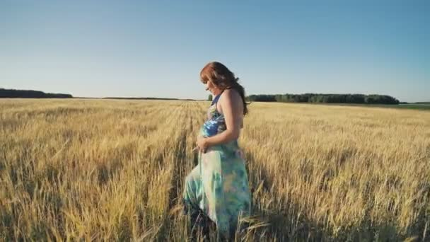 A pregnant young woman is walking on a wheat field at sunset. Video in motion.