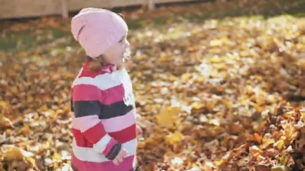 A three-year-old girl plays with a bunch of fallen leaves on a sunny autumn day.