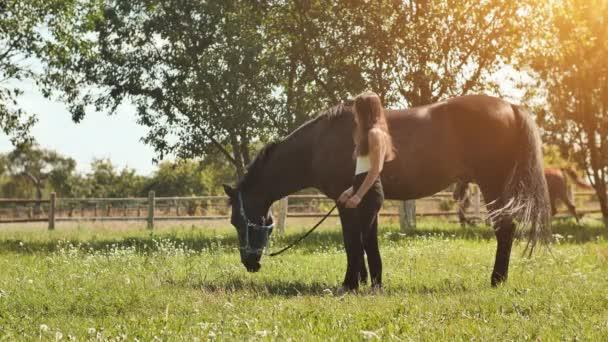 Kůň jí trávu na louce vedle dívky.