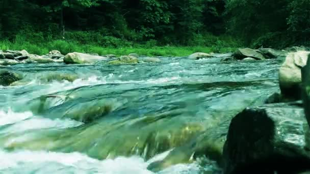 Amazing, magnificent, fast, stony mountain wild river run in the dense green forest. Charming nature landscape.Crazy, rapid water stream with foam and splashes through wet and moss covered stones.