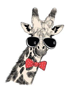 Giraffe in sunglasses.Vector illustration