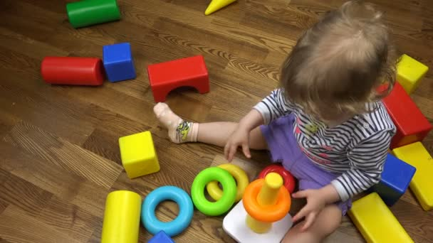 The child collects a pyramid of rings developing logical thinking