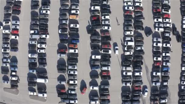 parking is made up of many different cars in parking spaces