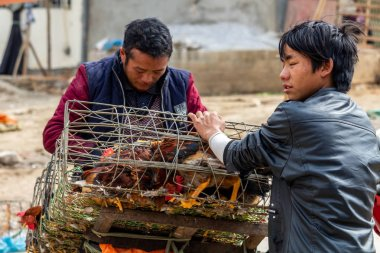 Dong Van, Vietnam - March 18, 2018: People from Hmong ethnic minority selling chicken at the Dong Van sunday market