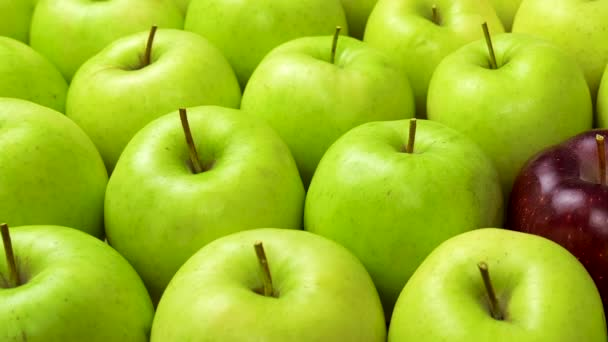 Red Apple In Green Apples. Many apples at table. Healthy diet