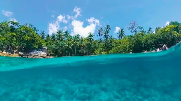 Napůl střílet blízko pláže s tyrkysovou vodou a zelené palmy