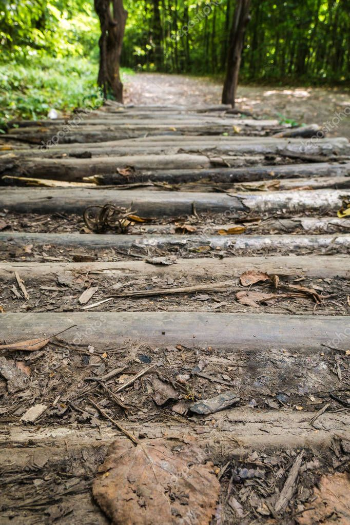 Close up of textured aged stripped wooden weathered bridge covered with old twigs and brown leaves in forest