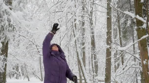 Senior woman in winter jacket with hood shaking off snow from tree branches and smiling in winter forest heavily covered with snow. 4K