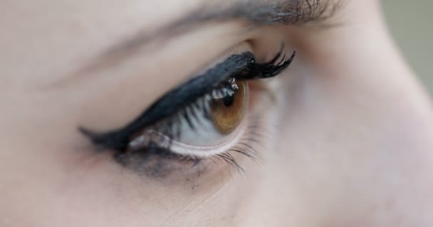 Extreme Close-Up Of A brown Eye Of A woman looking