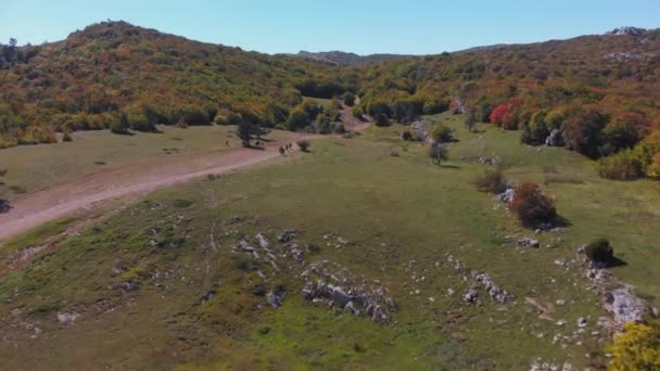 Aerial top view: group of people ride horses on mountain valley on sunny summer day