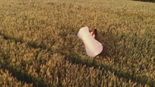 hölgy sziluett sétál mentén mező gazdaság vitorlázó szárnyak
