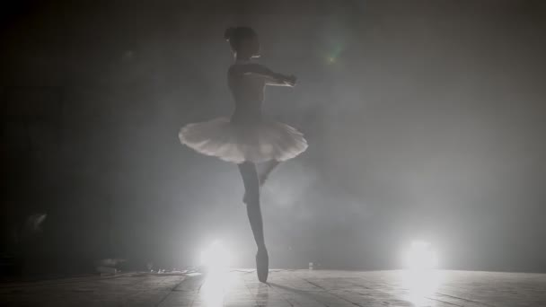 Young girl dancer jumping high in sky, little Ballerina posing, reflection in the mirror on the background. posing ballet barre. smoke