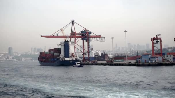 A large cargo ship stands in the port filled with iron containers with a crane