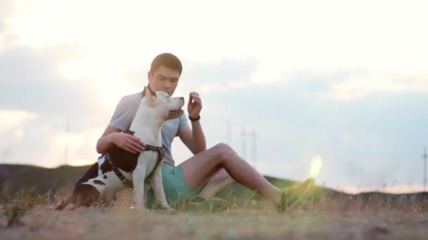 The young man sits in the field with his dog and with the help of feed trains her