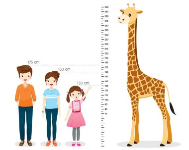 Man, Woman, Girl Measuring Height With Giraffe, Tall, Healthy, Care, People, Lifestyle clip art vector
