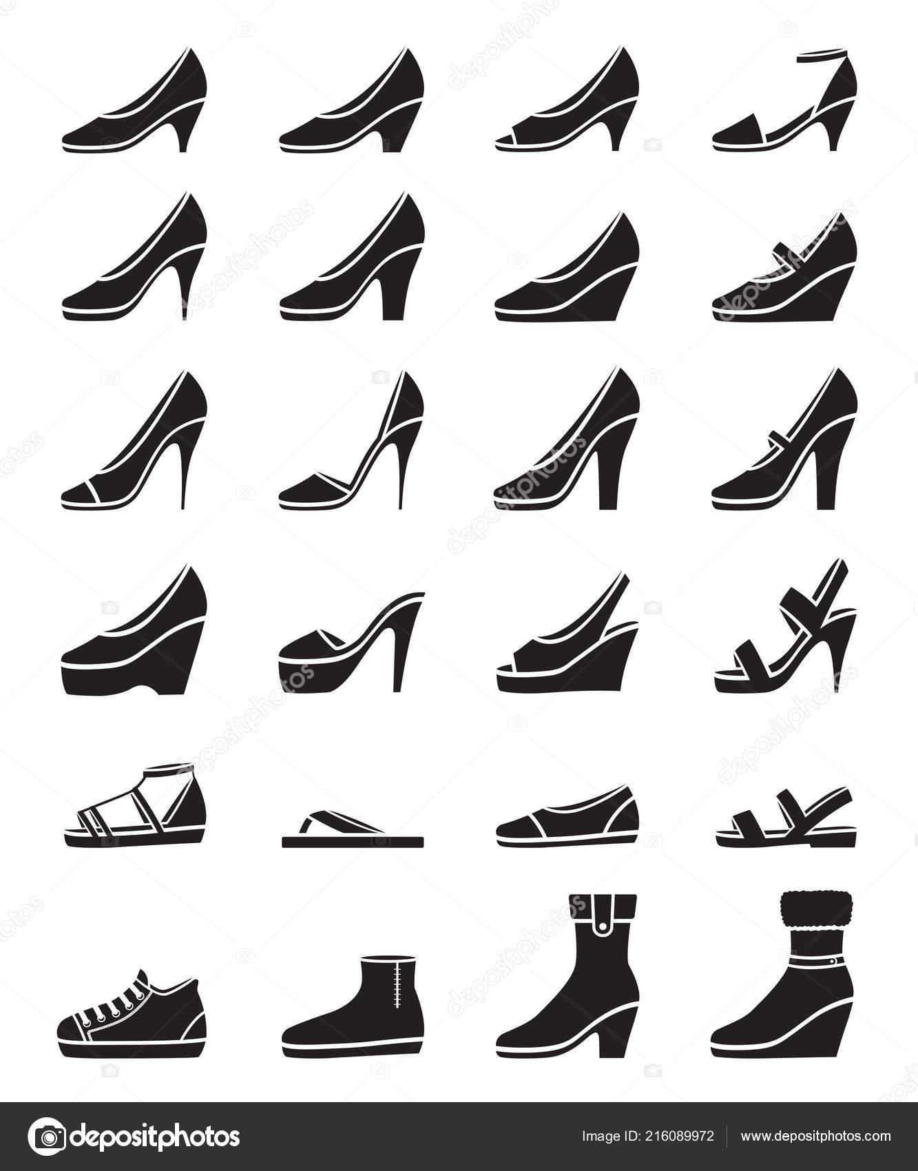 1ad9ea3aa Conjunto Diferentes Tipos Zapatos Mujer Monocromo Vista Lateral ...