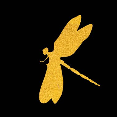 Golden dragon fly on white background, illustration