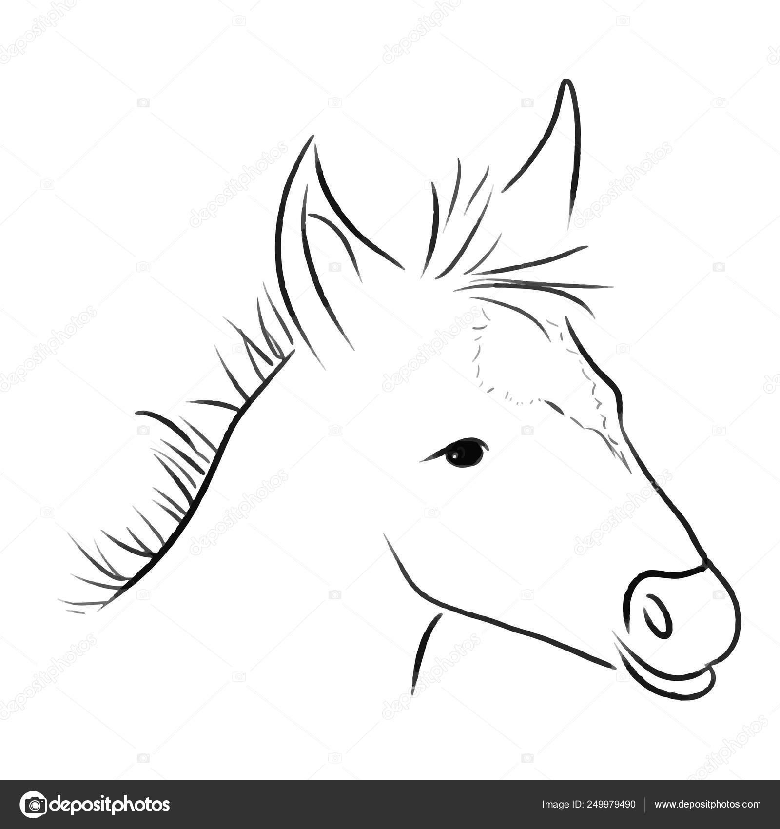 Horse Sketch One Line Draw Vector Illustration Stock Vector C Krasnenkon Gmail Com 249979490