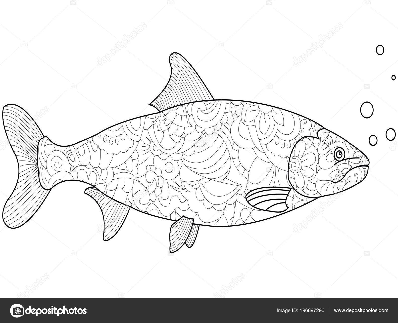Anti Stress Coloring For Adults And Children Fish Salmon Black