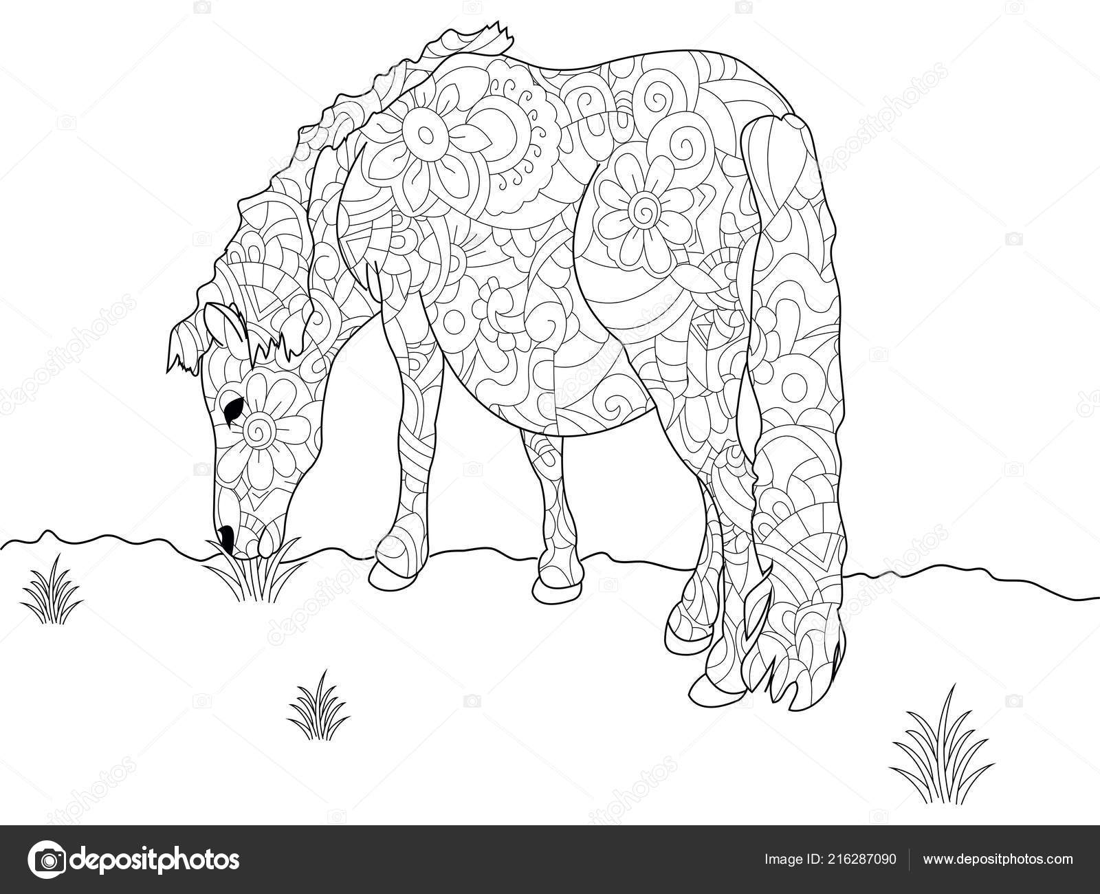 - Anti Stress Coloring Book Pony. Horse Doodle Style. Black Lines
