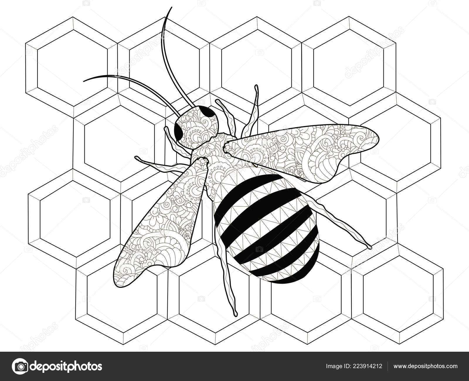 Insects A Bee On Honeycombs Anti Stress Coloring Raster For