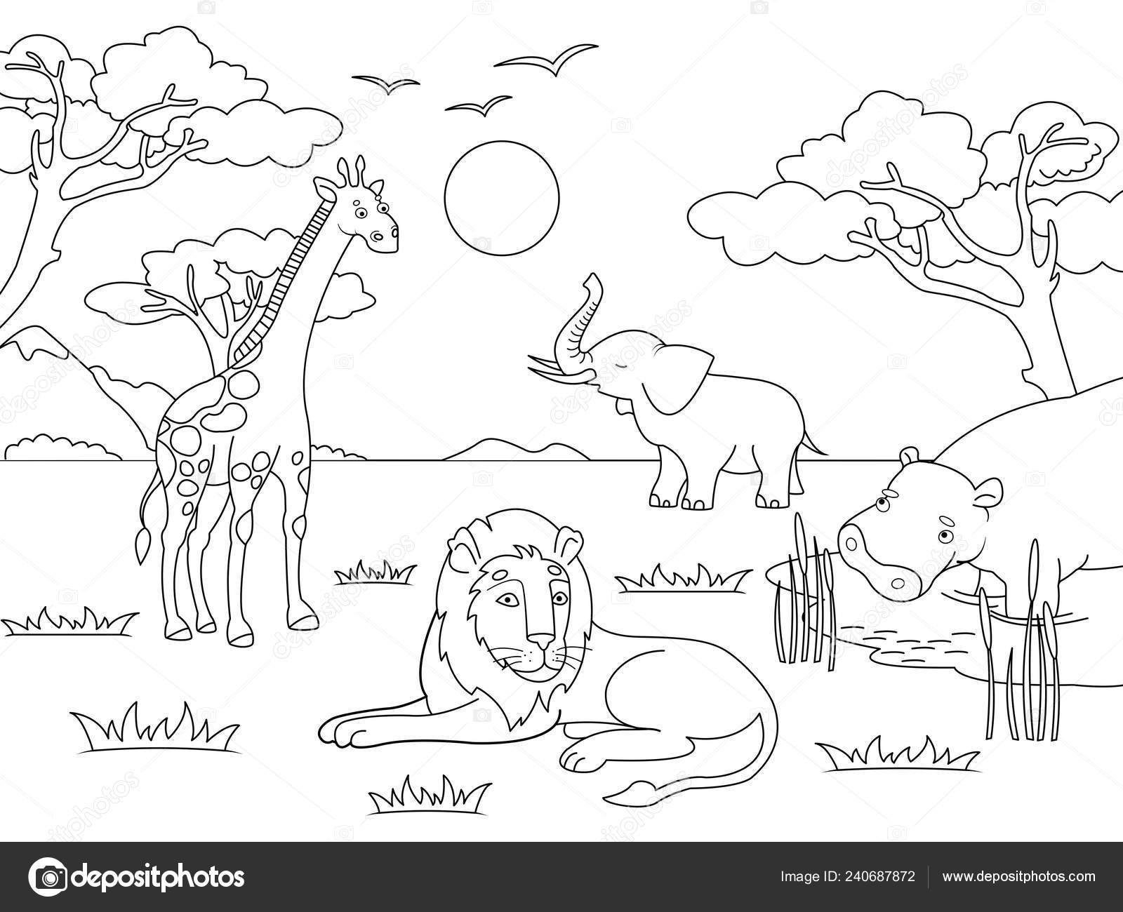 Bambini di disegno animali dell 39 africa continente - Zoo animali da colorare ...