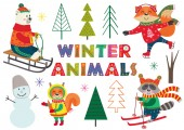 Photo set of isolated winter fun with animals part 1 - vector illustration, eps