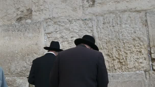 két zsidó férfi hátán, akik a jeruzsálemi megsebezőfalon imádkoznak