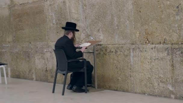 egy ülő ortodox zsidó ember imádkozik a mocsári fal Jeruzsálemben