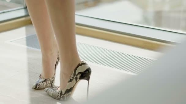 schlanke weibliche Beine in Schlangenhaut-Schuhen. Zeitlupe. hd