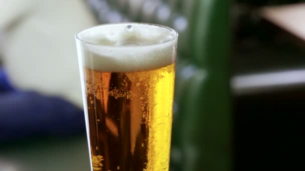 Close-up shot of one glass of beer standing on bar counter in a modern pub. 4K