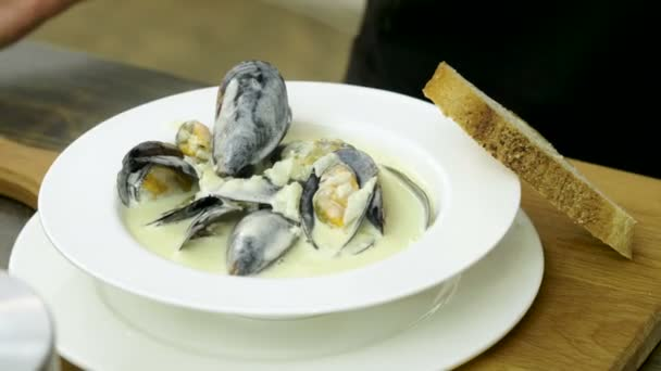 Shellfish seafood. Close-up of cooked mussels in cream sauce on a white plate. 4K