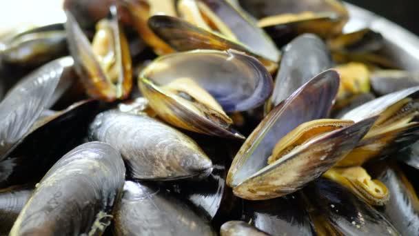 frische Meeresfrüchte. Nahaufnahme einer Schüssel mit rohen Muscheln in geöffneten Schalen. 4k