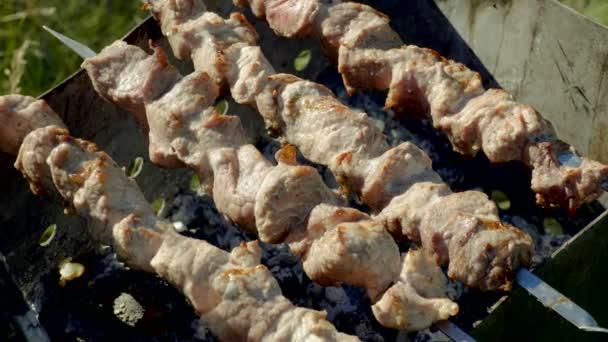 Marinované, šašlik Příprava na barbecue gril na dřevěné uhlí. 4k