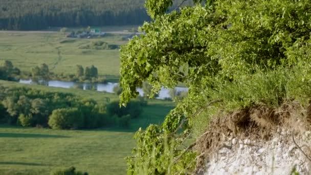 Krajina z řeky, zelený les a louku s vesnicí v pozadí. 4k