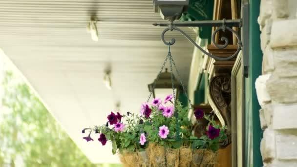 Čerstvé květiny visí u vchodu v moderní restauraci. 4k