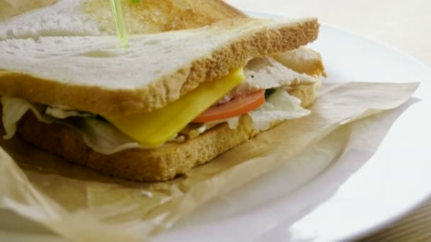 Chicken sandwich. Two pieces of bread with cheese, meat, tomato, cucumber, lettuce, sauce with garlic between them. 4K