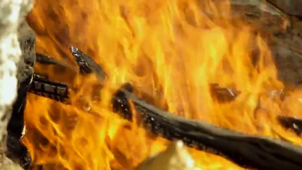 Táborák. Otevřený požár se dřevem, který je vyroben v přírodě u lidí, kteří táboří. Řecko. Zpomaleně. Hd