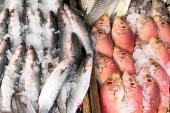 Vari tipi di pesce crudo sono visualizzati sul tavolo in legno box per la vendita nel mercato. Il pesce è mescolato con ghiaccio per conservare la sua freschezza.
