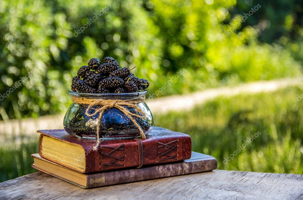 Vase with summer berries and a pile of books. Juicy ripe mulberry in the summer garden. Summer background. Relax in the garden