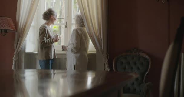 Többgenerációs nők beszélnek együtt. Senior nagymama nő mosolyogva az ő unokája látogató ablak közelében iszik teát vagy kávét. Fehér hajú idős nagymama otthon. 4k lassú mozgás