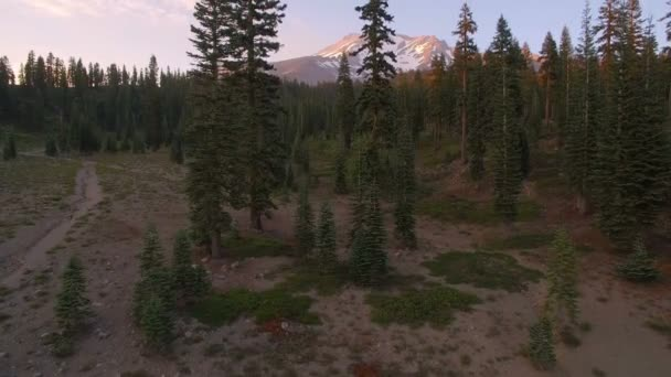 Mount Shasta from Bunny Flat Sunset Aerial Shot of Mountain and Forest California Elevate