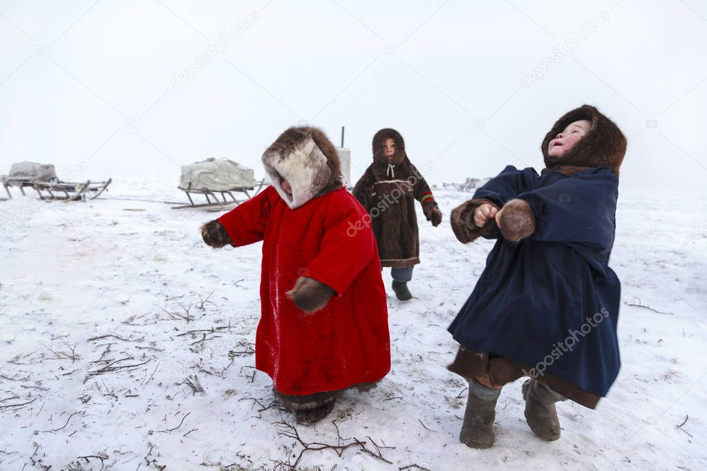 A resident of the tundra, indigenous residents of the Far North, tundra, open area, children ride on sledges, children  in national clothes