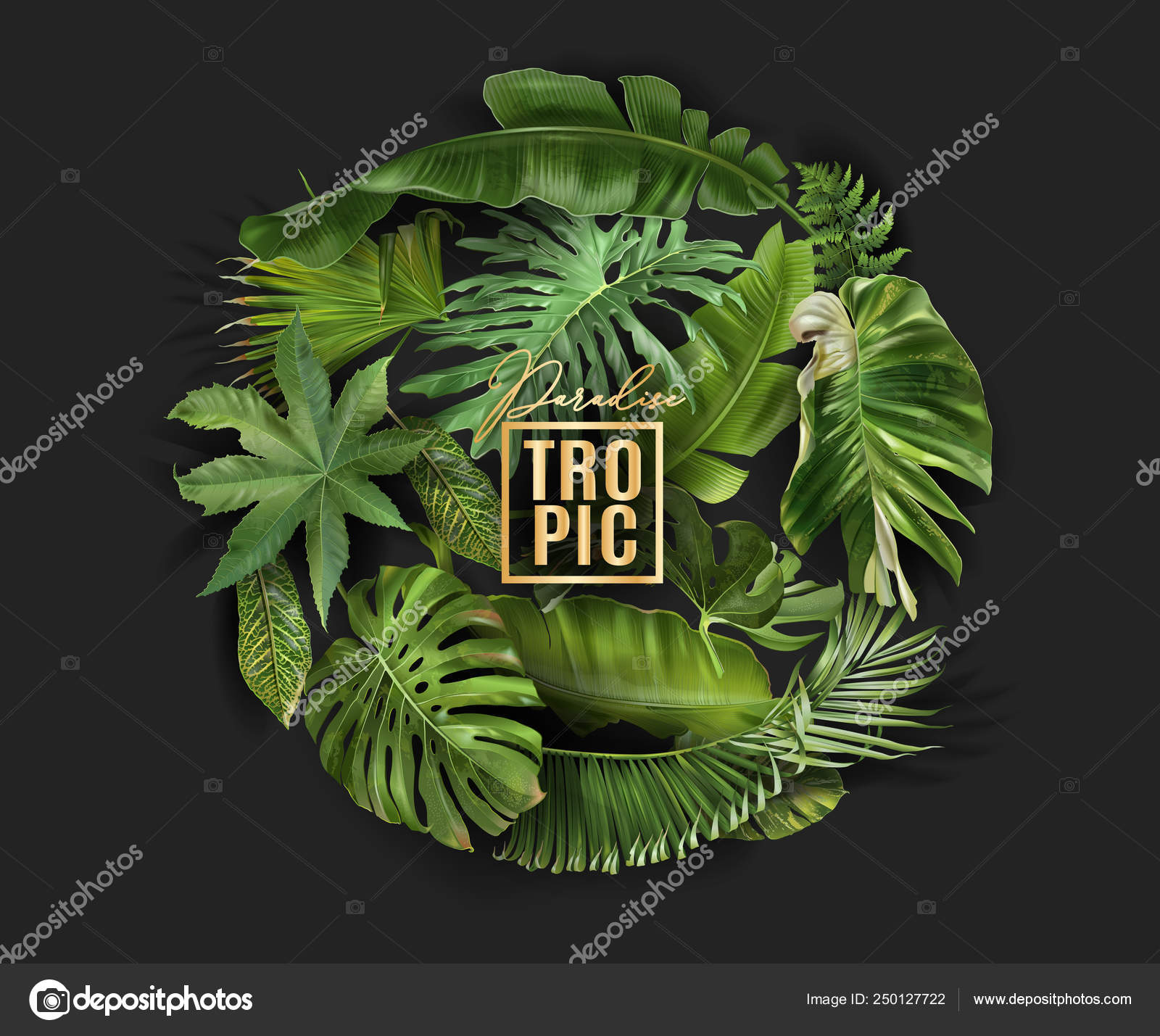 Vector Circle Banner With Green Tropical Leaves Stock Vector C Purplebird18 250127722