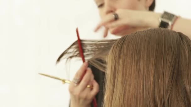 Hairstylist cutting female hair with scissors in hairdressing salon. Close up hairdresser making female haircut with scissors in beauty salon.