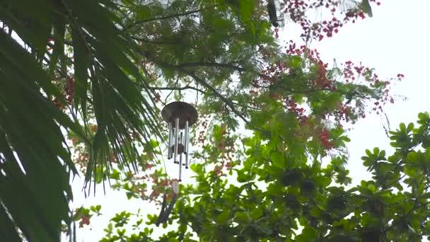 Vítr zvon visí na stromě v letní zahradě. Feng shui vítr zvonění na větve stromu. Feng shui symbolem koncepce